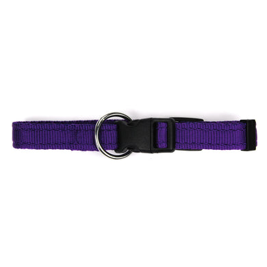 Collare per cani viola in polipropilene cushion - Collari in polipropilene  - Connecto.dog
