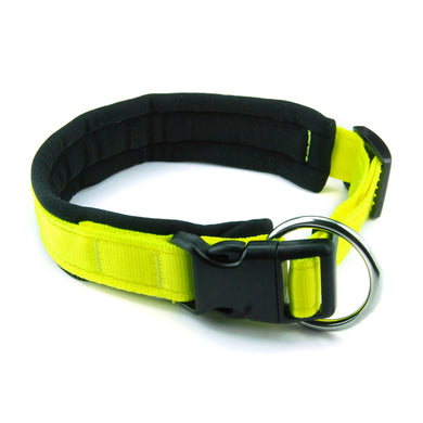 Collare per cani con imbottitura in neoprene Giallo Fluo – Yosemite Collection - Collare Neoprene  - Connecto.dog
