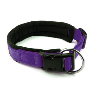Collare per cani con imbottitura in neoprene Viola – Yosemite Collection - Collare Neoprene  - Connecto.dog