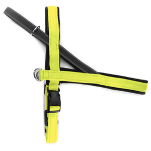 Pettorina Norvegese per cani Giallo Fluo – Yosemite Collection - Pettorina Norvegese  - Connecto.dog