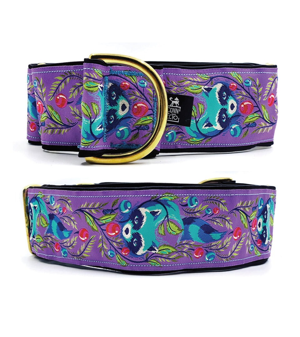 Collare martingala per levrieri jacquard - Martingale  - Connecto.dog