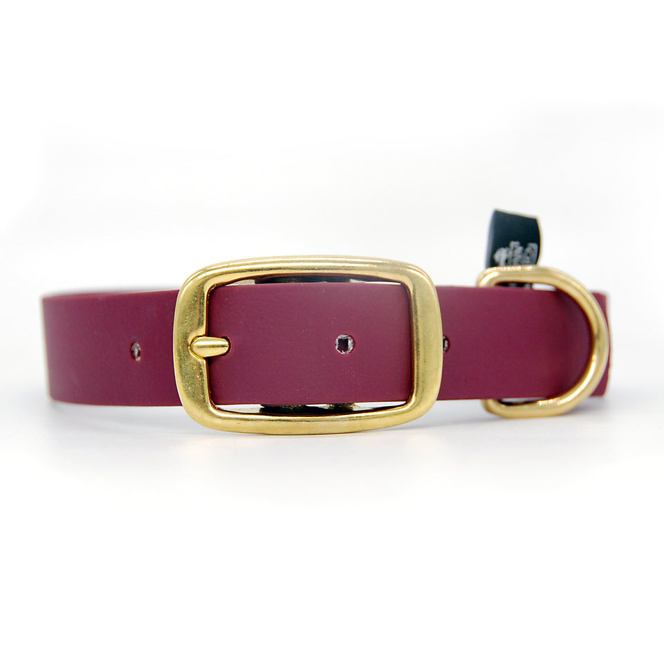 Collare in Biothane 25mm Wine con fibbia in ottone - Special Price  - Connecto.dog