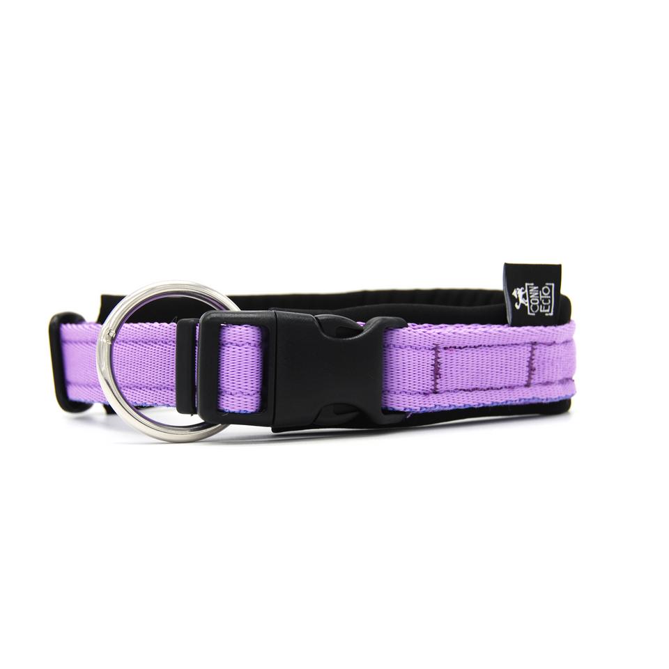 Collare per cani con imbottitura in neoprene Lilla – Yosemite Collection - Collare Neoprene  - Connecto.dog