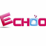 Special Price Promotion Hot Sale Echoo TV IPTV for Tiger 12 Months Activation Code - GreatBee