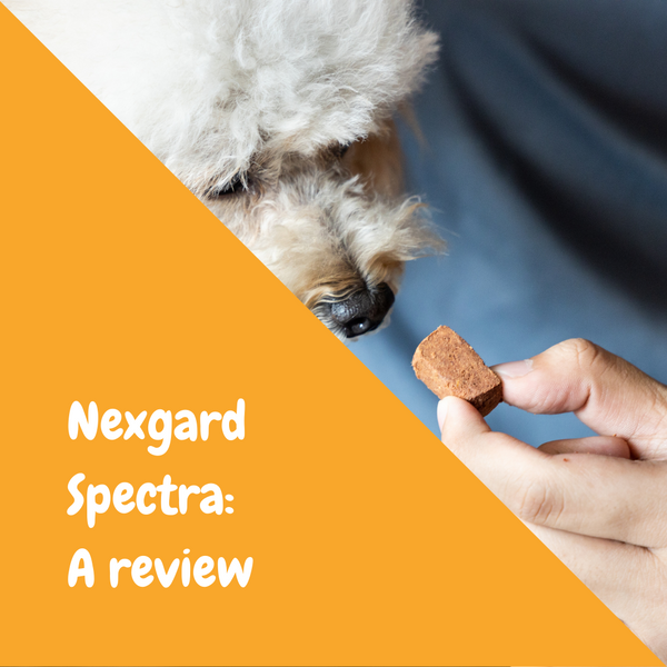 Nexgard Spectra: A Review