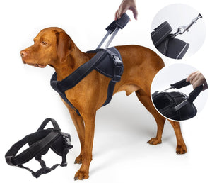 Dog Harness Specifications And Advantages