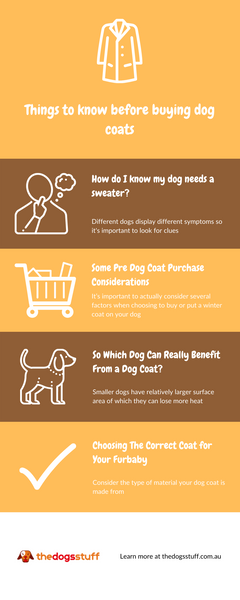 infographic explaining things that you should know before buying a dog coat
