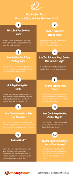infographic what a dog cool mat is and if it is worth it