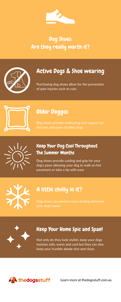 infographic explaining how to find the perfect dog shoe