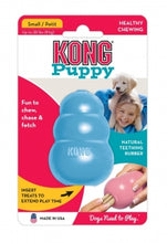 Kong Puppy, The Dogs Stuff
