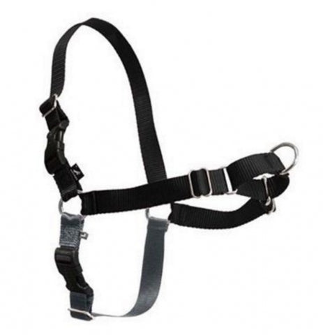 Gentle Leader EWalk Harness