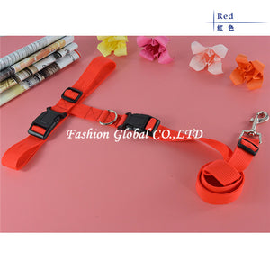 Waist Running Leash, The Dogs Stuff
