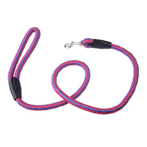 Braided Nylon Leash, The Dogs Stuff