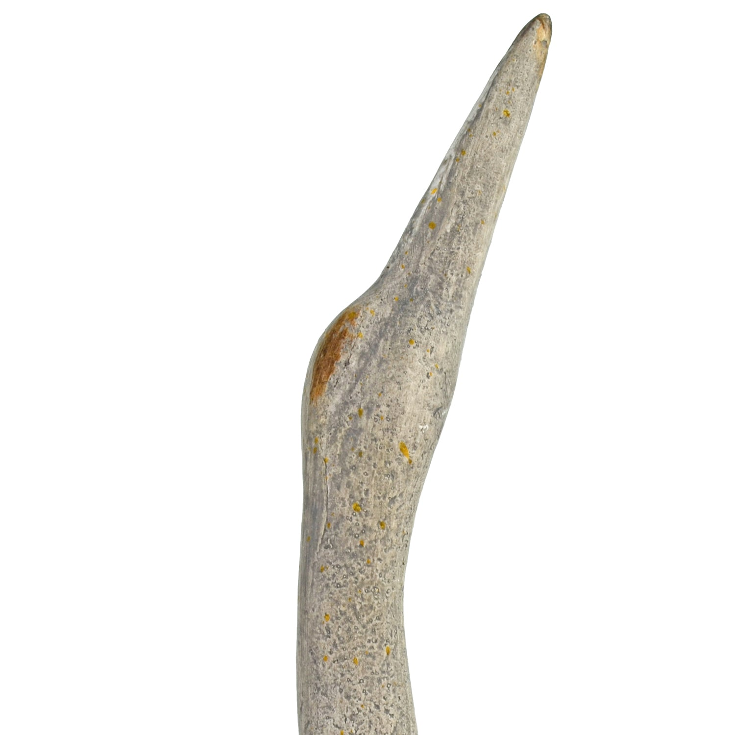 Solstice Sculptures Egret Tall 74cm Weathered Stone Effect - Ruby's Garden Boutique