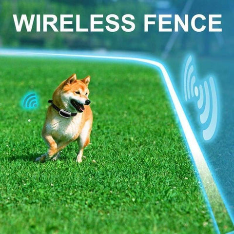 Electric Invisible Dog Fence