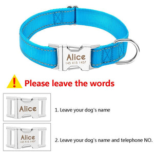Personalized Dog Collar Just For You - Collars