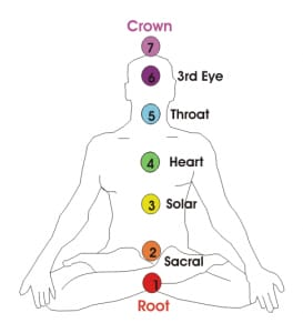 The 7 chakra system