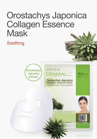 DERMAL COLLAGEN ESSENCE MASK PACK  - Orostacys Japonica - Dermal Australia