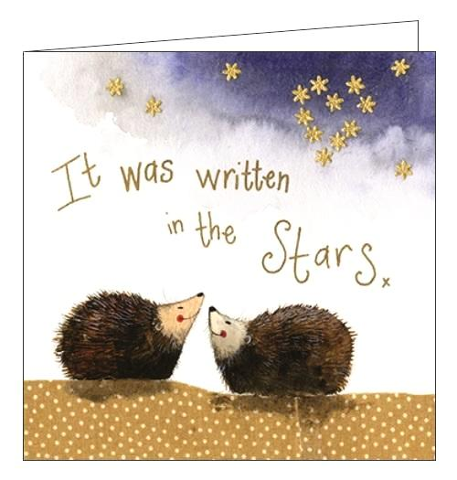 Alex Clark autumn cosy nighttime hedgehogs stargazing stars love blank card Nickery Nook new