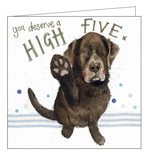 Alex Clark cats high five black lab dog blank card Nickery Nook