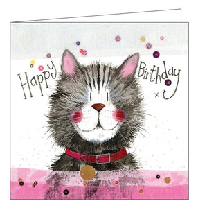 Alex Clark for her Happy Birthday cat and collar cute Happy Birthday card Nickery Nook