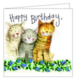 Alex Clark for her Happy Birthday trio of cats cute Happy Birthday card Nickery Nook
