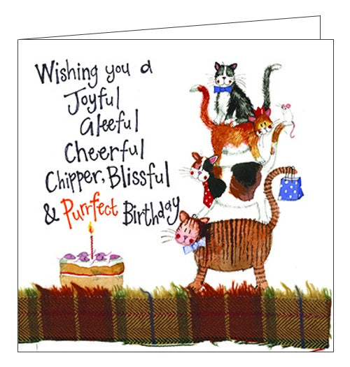 Alex Clark for her for him Happy Birthday trio of cats cat stack Birthday card Nickery Nook new