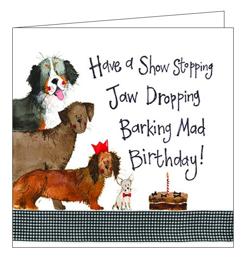 Alex Clark for her for him Happy Birthday trio of dogs Birthday card Nickery Nook