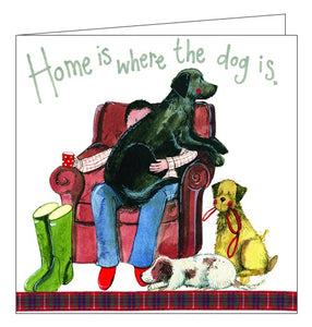 Alex Clark for him cat cats card home is where the dog is blank card Nickery Nook