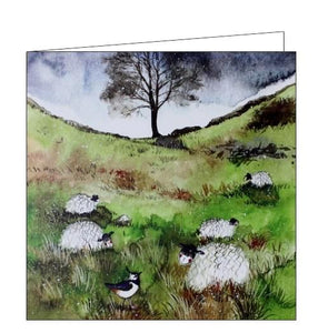 Alex Clark sheep and sycamore blank card farming countryside Nickery Nook