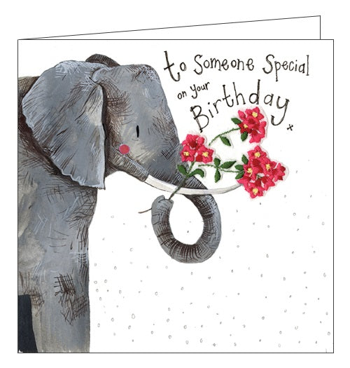Alex Clark to a Happy Birthday flowers elephant cute to someone special on your birthday card Nickery Nook