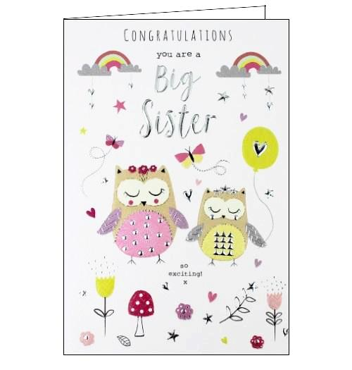 ICG you are a big sister new sibling cute pink congratulations card Nickery Nook