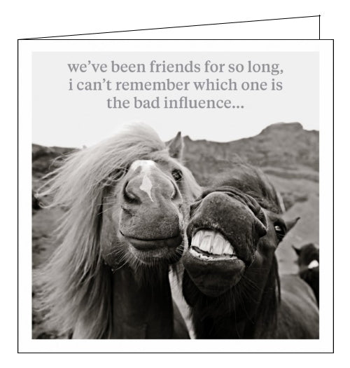 This blank card features a fantastic black and white photograph of two horses seeming to pose together for a selfie. The text on the front of the card reads