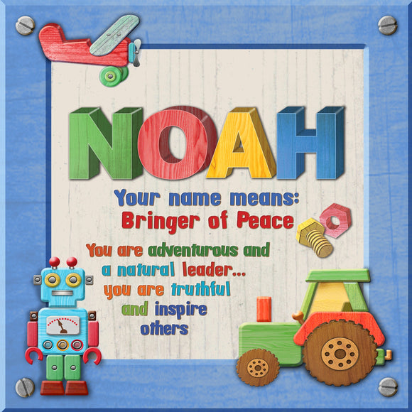 Tidybirds name meanings name definition plaque for kids  NOAH Nickery Nook