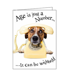 Noel Tatt age is just a number dog jack russell birthday card Nickery Nook