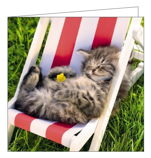Noel Tatt Cube blank card cute cat kitten cat nap blank card Nickery Nook