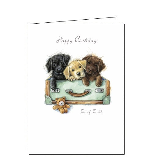 Noel Tatt Happy Birthday card labradors labs puppies Ruth Williamson dogs Nickery Nook