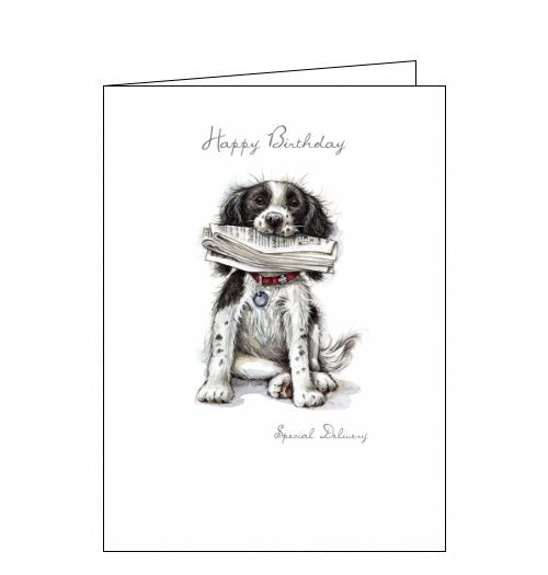 Noel Tatt Happy Birthday card special delivery Ruth Williamson dogs Nickery Nook