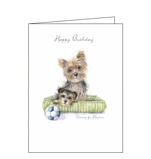 Noel Tatt Happy Birthday card waiting for playtime terriers Ruth Williamson dogs Nickery Nook