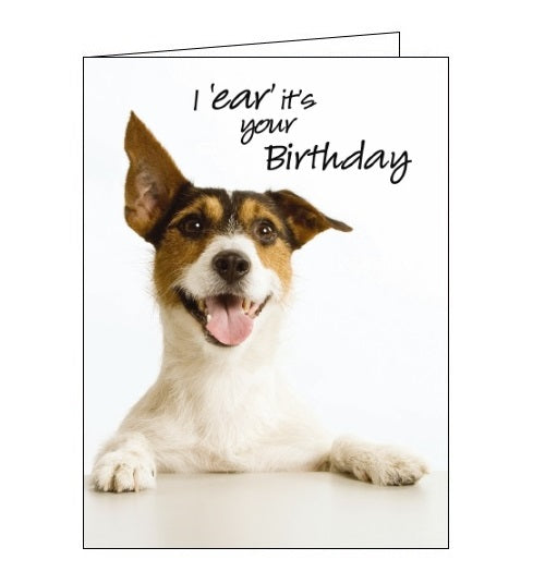Noel Tatt Picture dogs terrier This i ear its your birthday card Nickery Nook