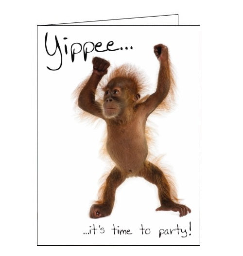 Noel Tatt Picture monkey yippee its time to party birthday card Nickery Nook