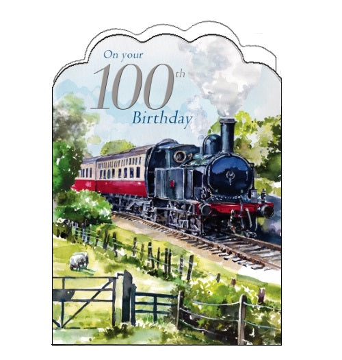 Noel Tatt congratulations 100 today happy 100th birthday steam train birthday centerary card Nickery Nook