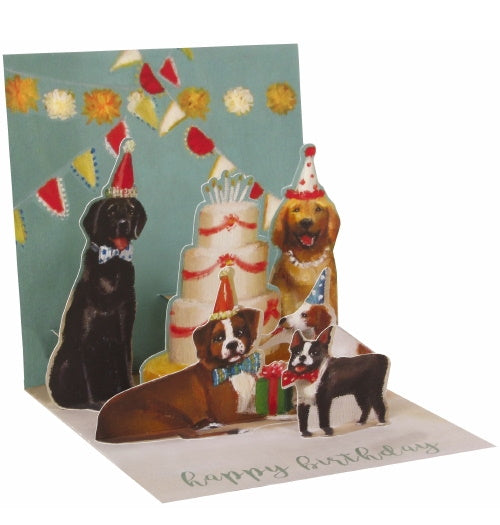 Noel Tatt with paper pop up dog party birthday card