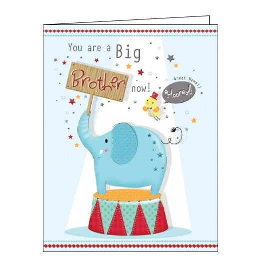 Piccadilly Goldmark you are a big brother now new baby card Nickery Nook