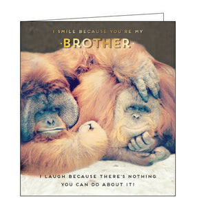 Pigment monkeys i laugh because you're my brother birthday card.