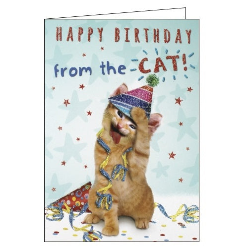 Sloan Graphics Happy Birthday from the cat card Nickery Nook