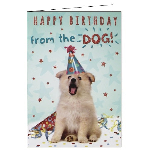 Sloan Graphics Happy Birthday from the dog card Nickery Nook