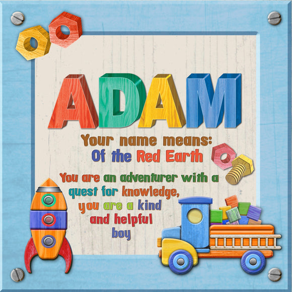 Tidybirds name meanings name definition plaque for kids ADAM Nickery Nook
