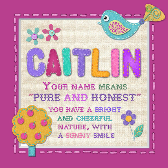 Tidybirds name meanings name definition plaque for kids CAITLIN  Nickery Nook
