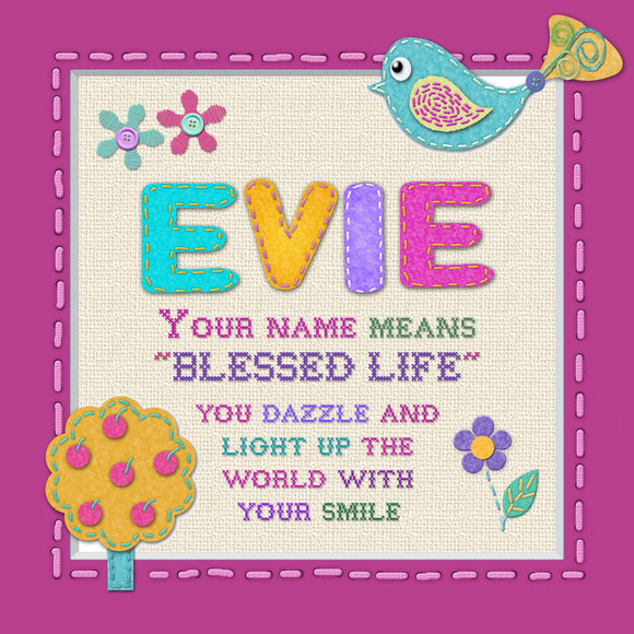 Tidybirds name meanings name definition plaque for kids EVIE  Nickery Nook